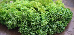 An EASY Kale Chips Recipe for the Kids